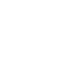 YouTube YVDL Media icon